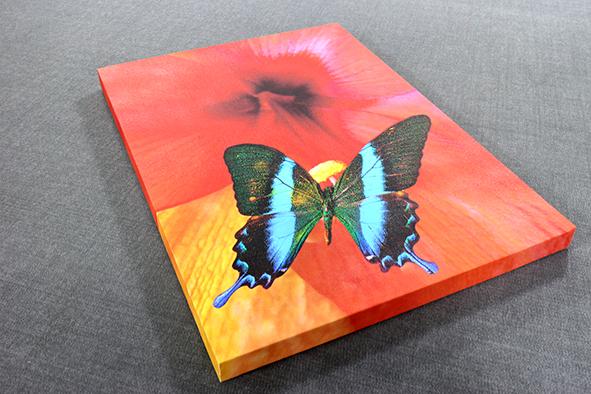 <div>Stretched Canvas Prints</div> 1 Image