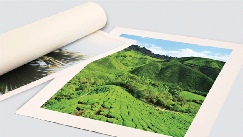 <div>Rolled Canvas Print</div> 1 Image